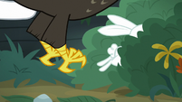 Fluttershy ducks into bushes to avoid eagle S9E18