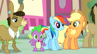 Spike 'Twilight can find a rulebook for everything!' S4E12