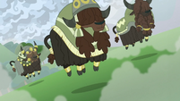 Yaks stomping on the ground S9E25