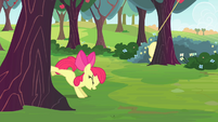 Apple Bloom bucking apple tree S4E17