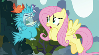 Fluttershy worried about the puckwudgie S8E2