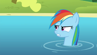 """Rainbow """"I guess you won this one, Maud"""" S4E18"""