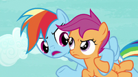 """Rainbow """"what the actual Wonderbolts think"""" S8E20"""