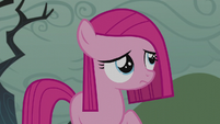Filly Pinkamena looks up at the sky S5E25