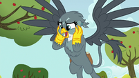 "Gabby ""from everypony in Ponyville!"" S6E19"