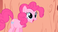 """Pinkie Pie """"you're gonna do it again"""" S1E16"""