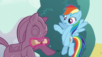 Rainbow Dash finds Shining Armor's note S5E19