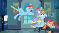 "Rainbow Dash shouting ""too much!"" S7E7"