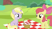 Thanks for joining my small picnic Apple Bloom