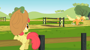 Apple Bloom watches Applejack practice S2E14.png