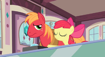 Disappointed Big Mac S2E17