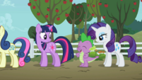 Twilight, Spike, And Rarity S2E15.png