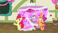 CMC stop the card from falling over S2E17