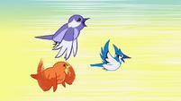 Birds flying away S1E23