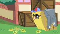 Pinkie Pie hides in a hay bale S1E25