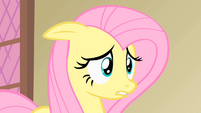 Fluttershy oh my S01E22