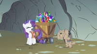 Rarity why do I S1E19