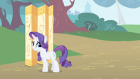 Rarity something together S1E20