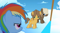 Filly Rainbow looking at the colts S1E23