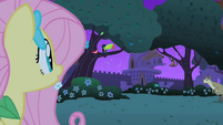 Fluttershy finds the critters S1E26