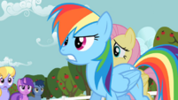 Rainbow Dash frustrated S02E15.png