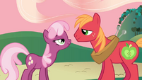 Cheerilee and Big McIntosh look into each other's eyes S2E17