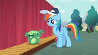 Rainbow Dash talking to Tank S2E07
