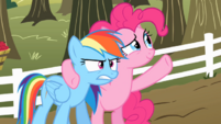 Pinkie Pie -It was like a moment in time you can never get back- S2E15.png