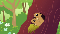 Squirrels in the trees S1E23