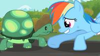 Tank Rainbow Dash foot-bump S2E07