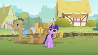 Twilight splashed by Mr. Greenhooves S01E15
