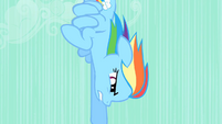 Rainbow Dash speeding downward S01E19