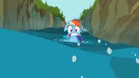 Rainbow Dash weird mouth S02E08