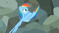 Rainbow Dash pulled away S2E07