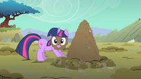 Twilight Sparkle mud on face S01E19