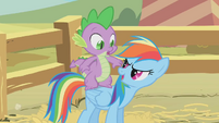 """Rainbow Dash """"Ready for another pony ride?"""" S1E13"""