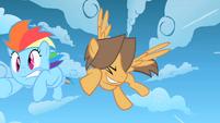 Bully slams into Rainbow Dash S1E23