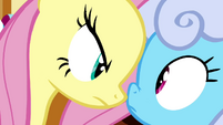 Fluttershy in Shoeshine's face S2E19