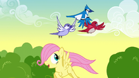 Fluttershy sees birds flying S1E23