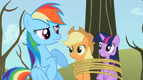 Rainbow Dash sounded like S2E10