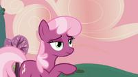 "Cheerilee ""That's an apple tree"" S2E17"