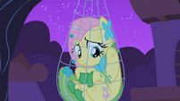 Fluttershy trapped in her trap close-up S1E26