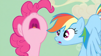 "Rainbow Dash ""what"" face to Pinkie Pie S02E14"