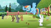 Rainbow Dash 'hold a contest' S2E07
