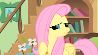 Fluttershy trying to guess S01E22