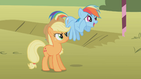 Applejack looking at an excited Rainbow Dash S01E13