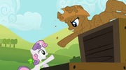 Rarity reaches out to Sweetie Belle S02E05.png