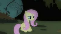 Fluttershy banished S01E22