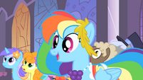 "Rainbow Dash ""now's my chance!"" S1E26"