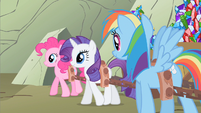 Rainbow Dash all those dogs S1E19